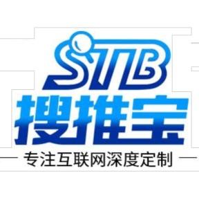 西安网站建设公司就找西安搜推宝排名大师